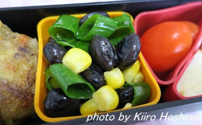 f:id:kiiroihoshi:20160617135818j:plain