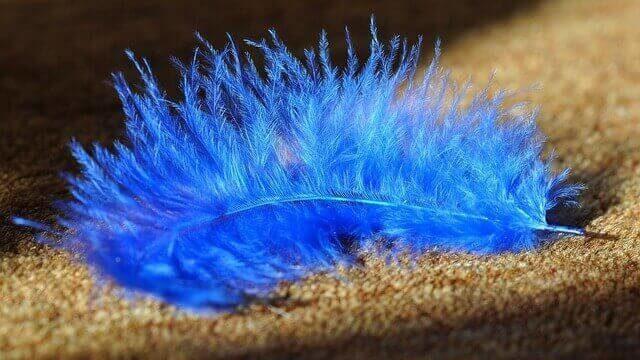 マヤ暦KIN235、青い鷲・青い鷲・音1