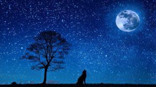 マヤ暦KIN243、青い夜・青い鷲・音9