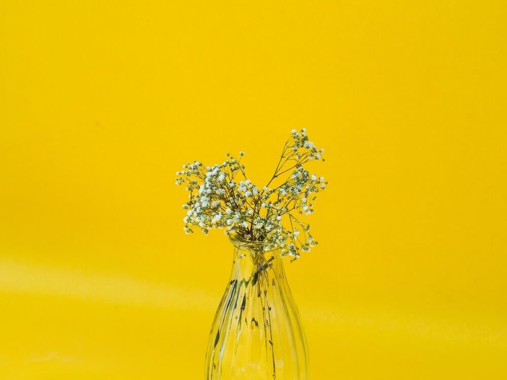 マヤ暦KIN24、黄色い種・白い魔法使い・音11